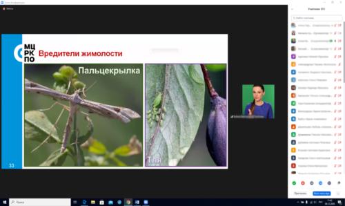 Московское долголетие 15-12-2020 садоводство