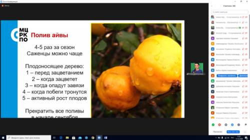 Московское долголетие_21-12-2020_садоводство