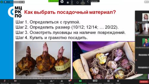 Московское долголетие-05-04-2021-садоводство