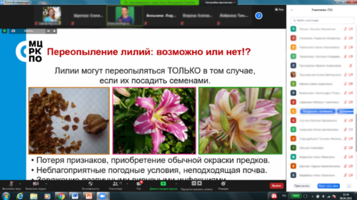 Московское долголетие_15-04-2021-садоводство