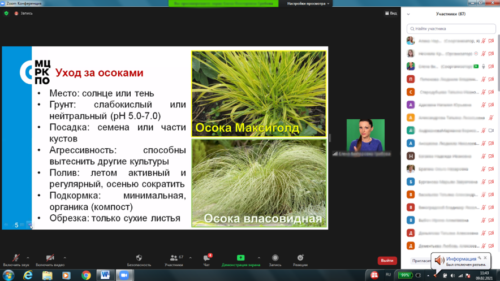 Московское долголетие-16-02-2021-садоводство