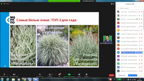Московское долголетие_04-02-2021-садоводство