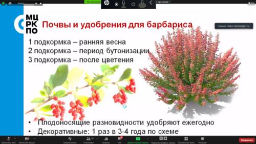 Московское долголетие_11-06-2021_садоводство