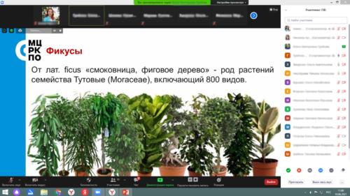 Московское долголетие_11-06-2021_цветоводство