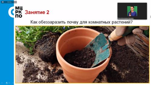 Московское долголетие-29-03-2021-цветоводство